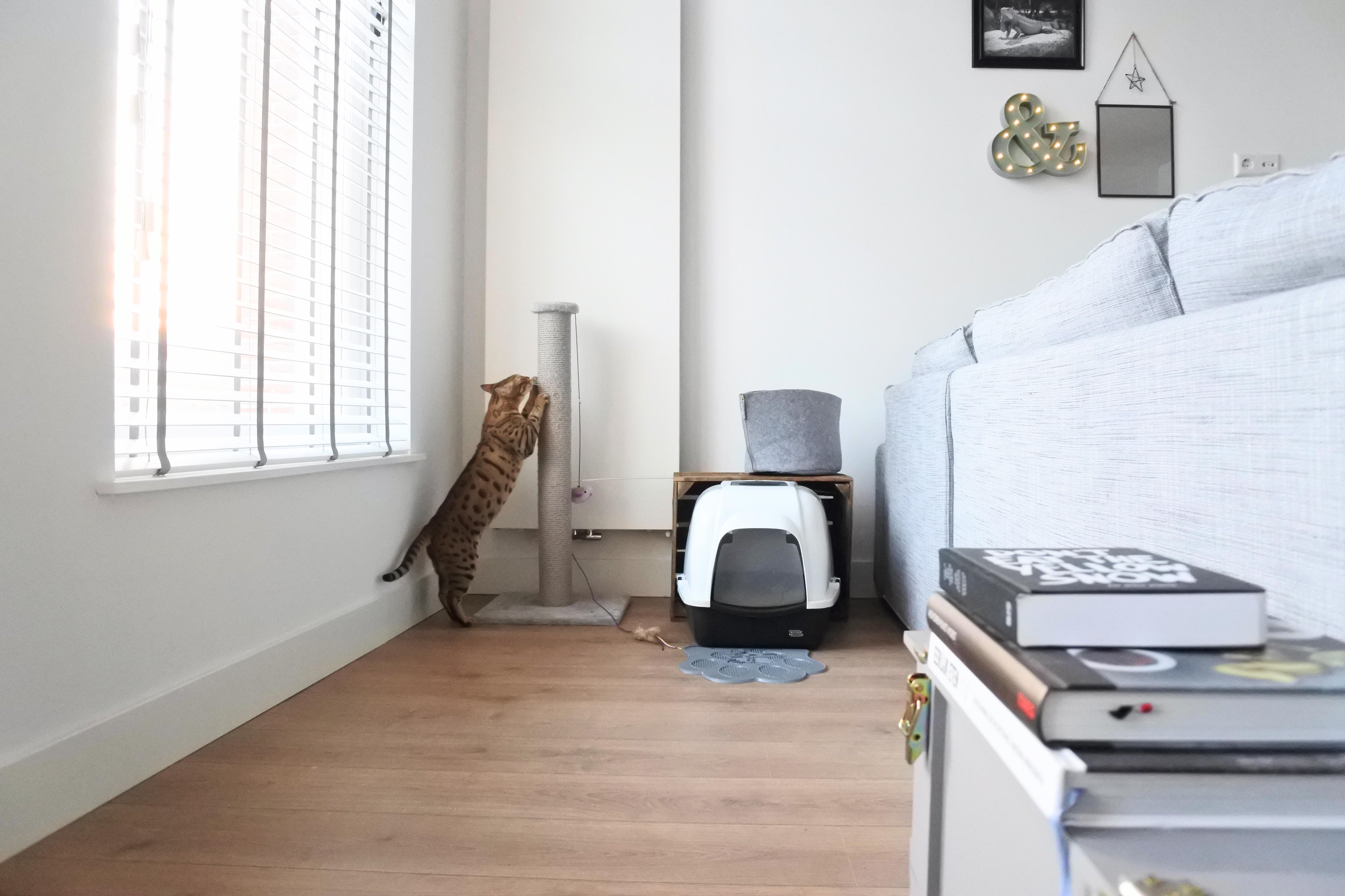 interior-design-hygge-styling-amsterdam-cat-corner